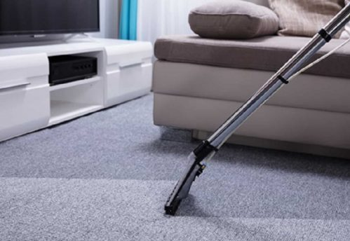 Auckland steam cleaner cleaning home carpet with grey couch and tv on white sideboard in background.
